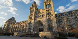 Property Area Guide for South Kensington
