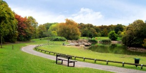 Property Area Guide for Beckton